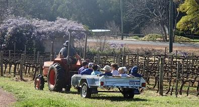 2015_tractorride.jpg